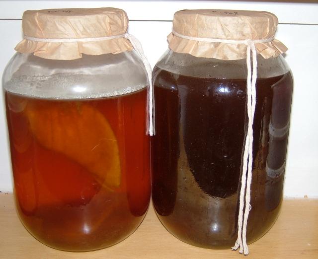 Kombucha tea fermentation